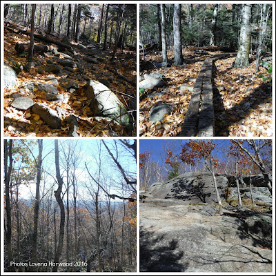 white cross trail, solo hiking, NH 52 with a view,