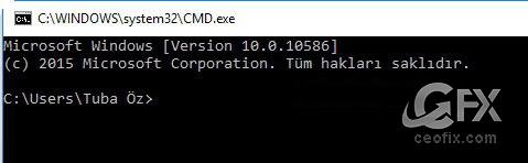 DNS Ön Belleği Nasıl Temizlenir? www.ceofix.com