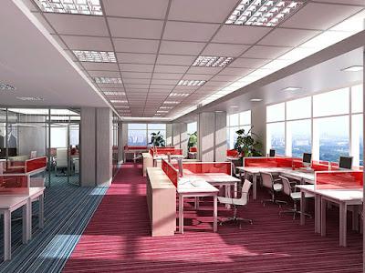 Văn phòng làm việc tràn đầy sức sống và cảm hứng nghệ thuật của sắc màu
