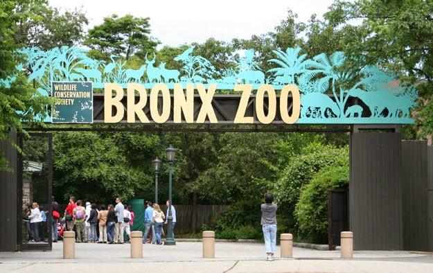 El Bronx Zoo en Nueva York