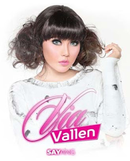 Lagu Via Vallen - Via Vallen Sayang Mp3