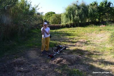 стричь траву в Португалии