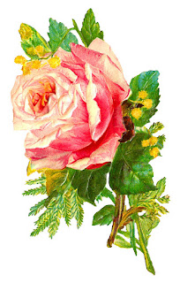 rose flower image illustration digital download