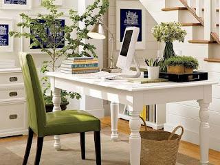 Plantas de interior en la oficina