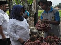 Gelar Potensi Sarana  Promosikan Hasil Pertanian Lokal
