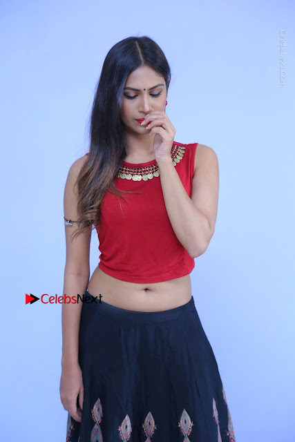Telugu Actress Nishi Ganda Stills in Red Blouse and Black Skirt at Tik Tak Telugu Movie Audio Launch .COM 0003.JPG