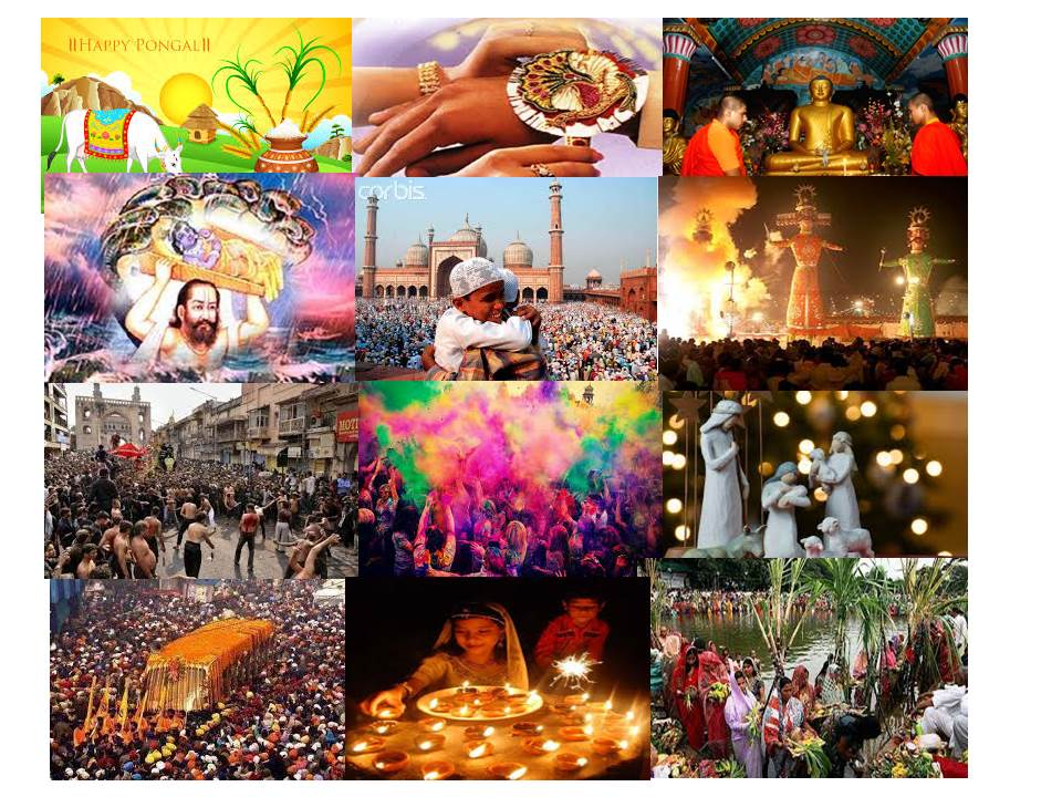 cultural diversity in india