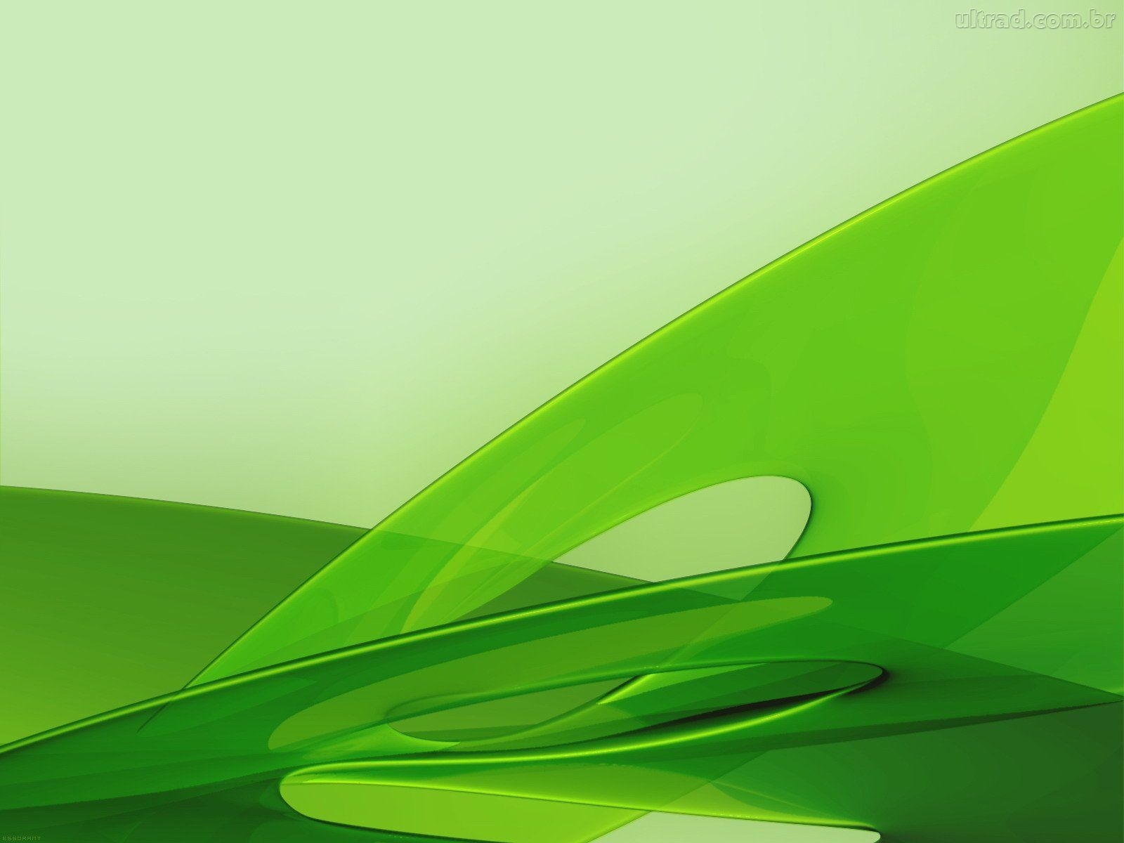 Imagensnet papel de parede verde - Papel pared ...