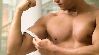 cara memperbesar otot lengan