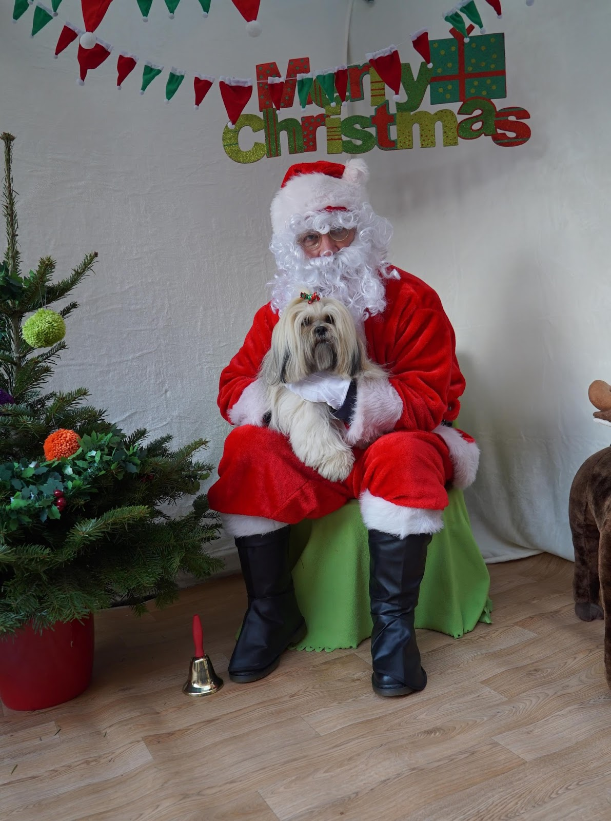 Elsa Had Her Picture Taken With Him And Got A Goody Bag Proceeds For This Photo Shoot Go To The Ark Ashbourne Animal Welfare