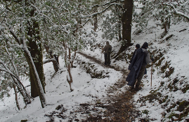 Trekking during snowfall
