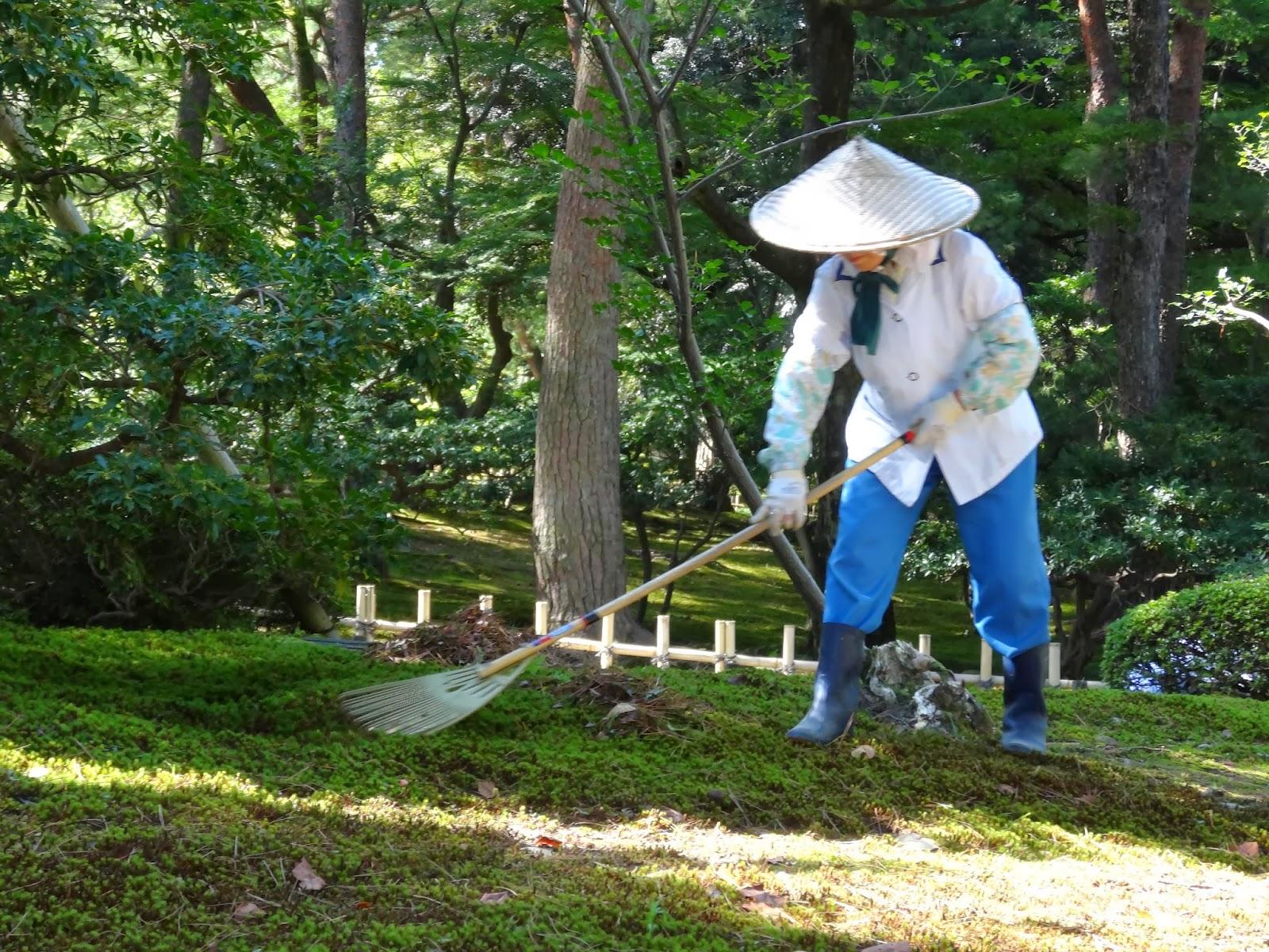le blog de parcs et jardins de l 39 oise le jardin de mousse au japon. Black Bedroom Furniture Sets. Home Design Ideas