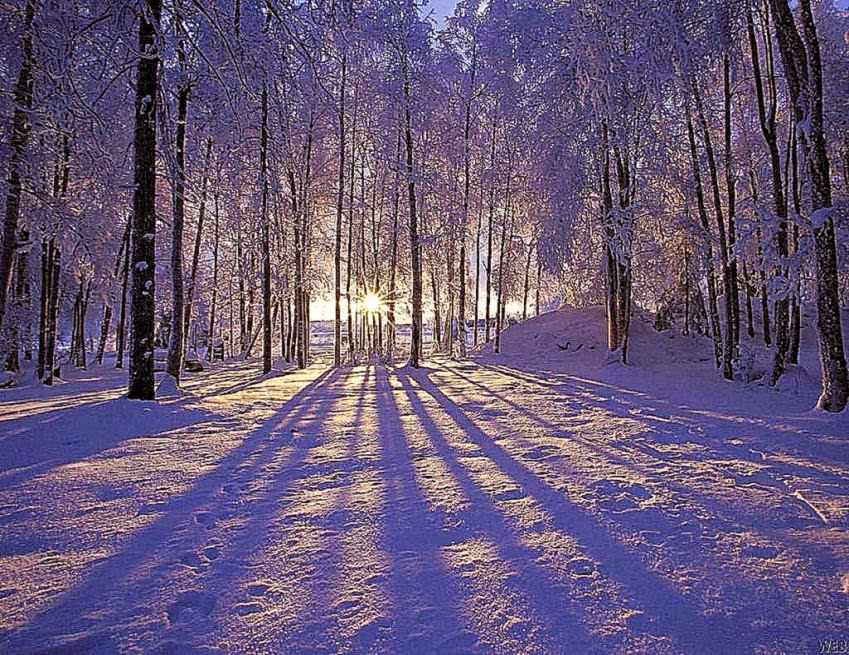 Winter background pictures for computer