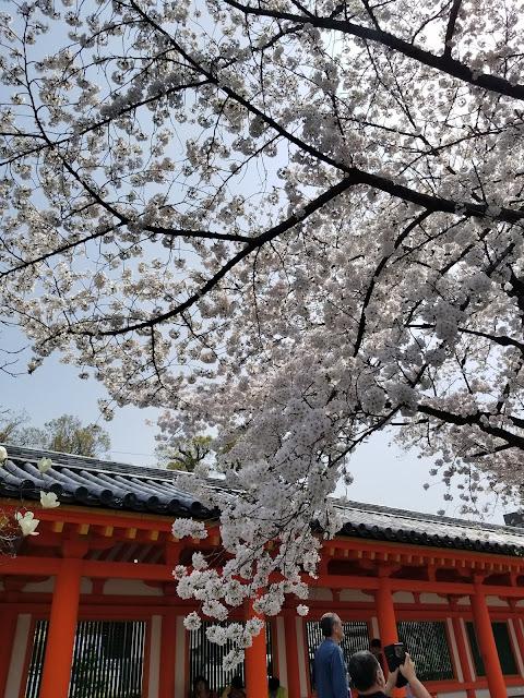 Templo Sanjûsangen-dô, Kyoto, Japón, Japan, Viaje a Japon, Cerezos, Elisa N, Blog Viajes, Lifestyle, Travel, TravelBlogger, Blog Turismo, Viajes, Fotos, Blog LifeStyle, Elisa Argentina