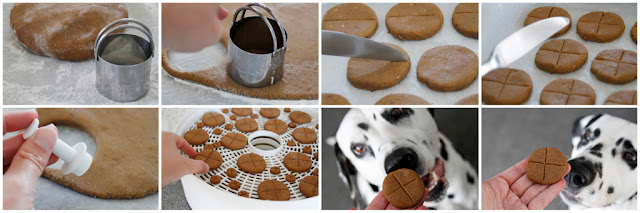 DIY homemade Easter dog treats, step-by-step how to make