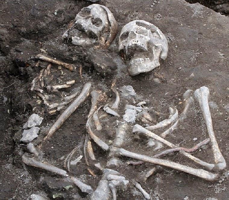 Real vampire bones