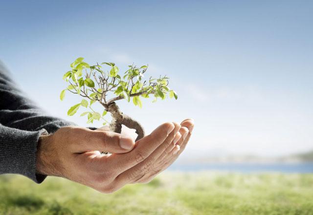 Persiapan Investasi untuk Masa Pensiun