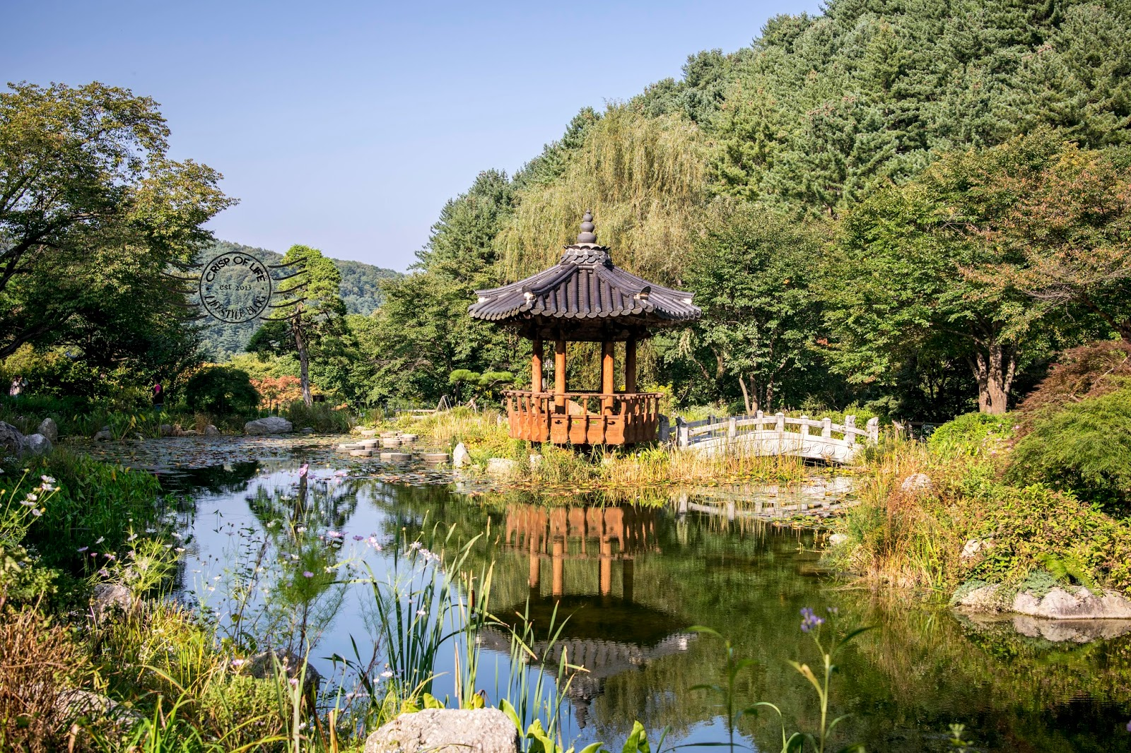 Nami island garden of morning calm tour korea for Island garden