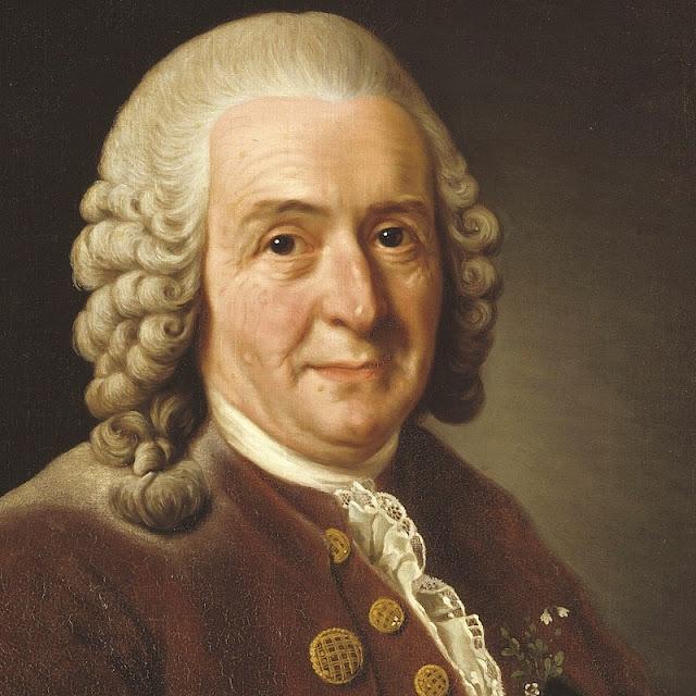 Lukisan wajah ilmuwan Carolus Linnaeus