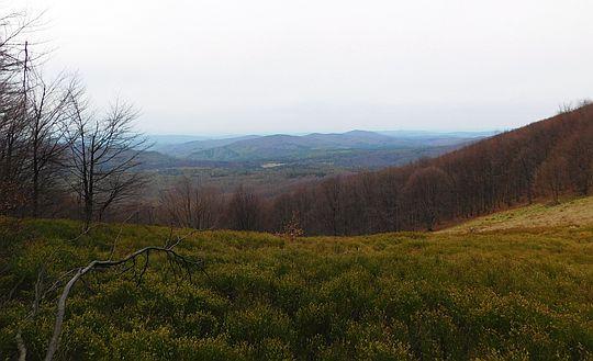 Widok na dolinę Solinki i pasmo graniczne.