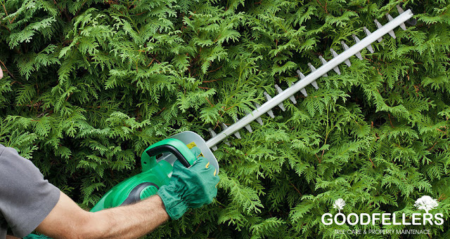 http://goodfellers.ie/hedge-trimming/