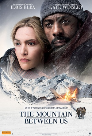 The Mountain Between Us (2017) ταινιες online seires oipeirates greek subs