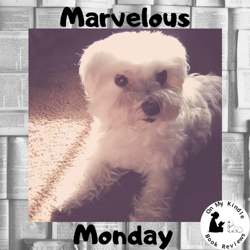 Marvelous Monday with Lexi: Jan 21st Edition!