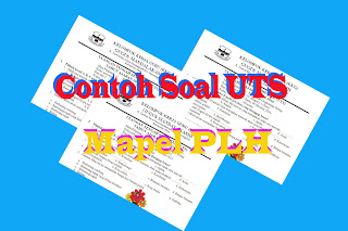 Download Soal UTS Mapel PLH