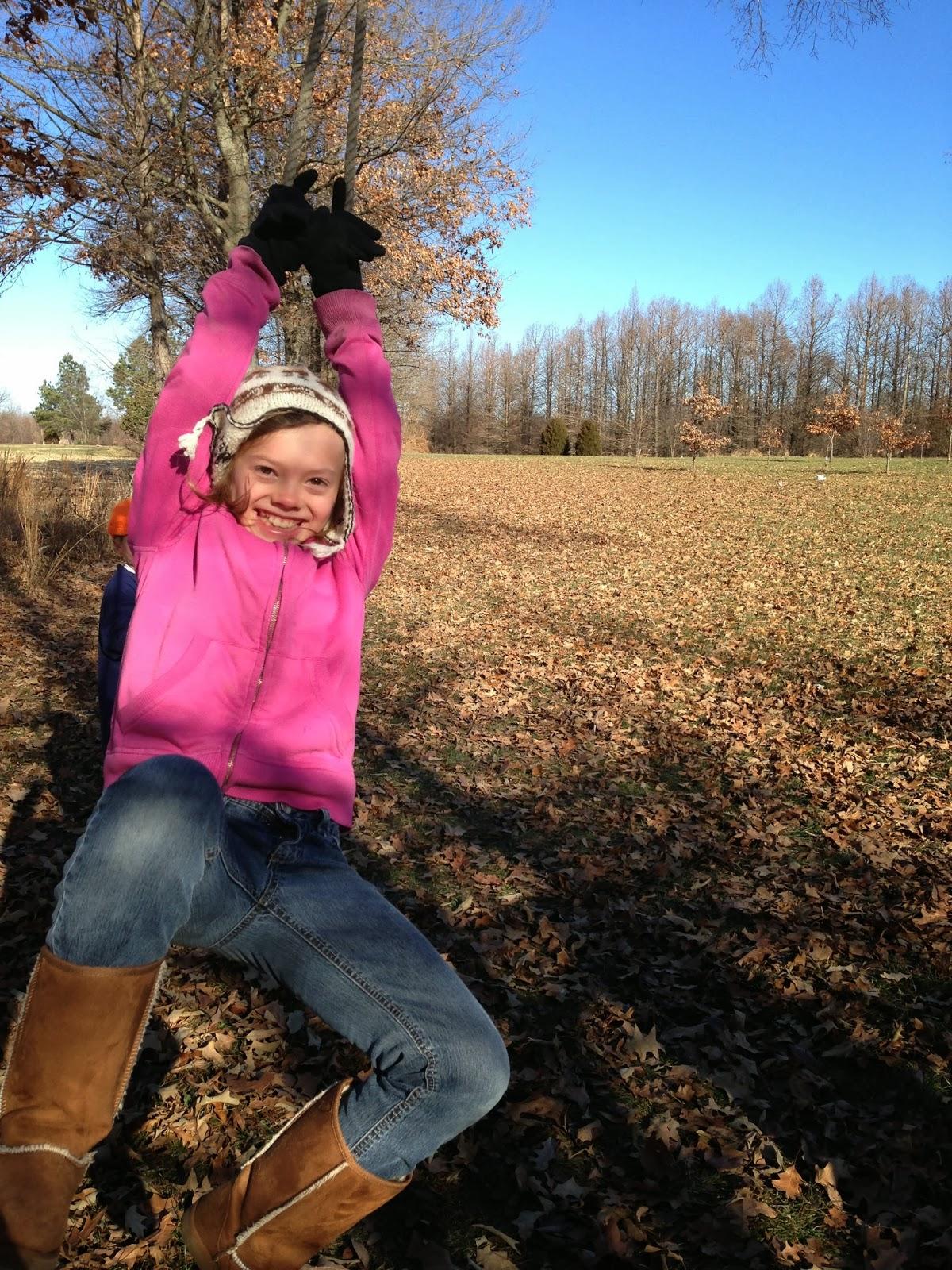 farm, tree swing