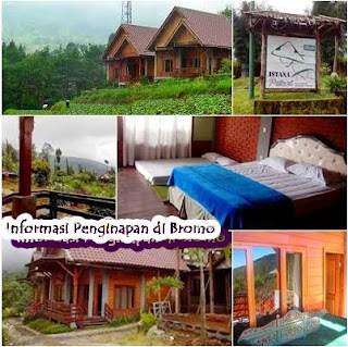 http://www.sewahomestaybromo.com/2018/07/informasi-penginapan-gunung-bromo.html