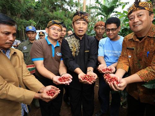 Kopi Bukit Palasari Kec. Cilengkrang, Kabupaten Bandung