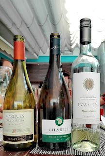 chato grato - cata de vinos blancos