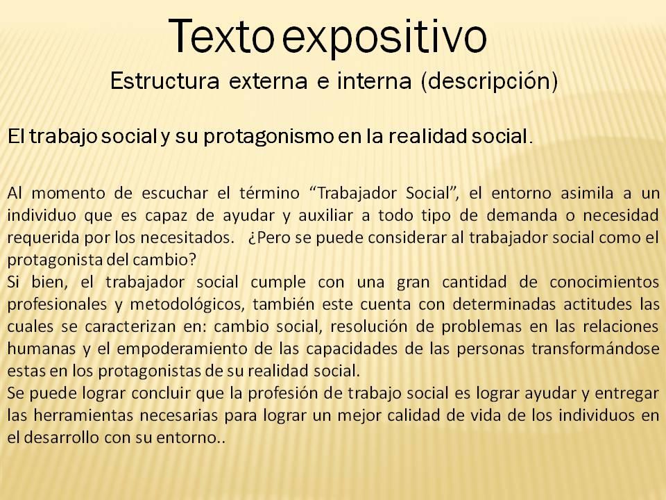 Mapache Gris Diego Ugarte Tarea 4