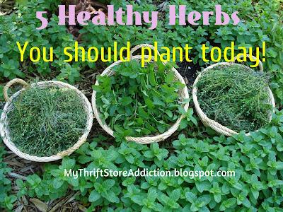 Health benefits of herbs