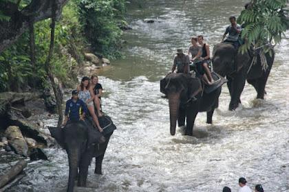3 Destinasi Wisata Alam Langkat Sumatera Utara Yang Memikat Traveler