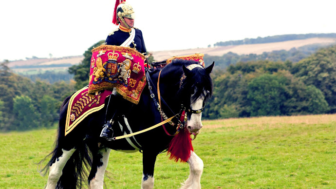 Wallpaper: Royal Soldier on Horse