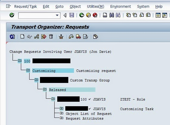release group in sap