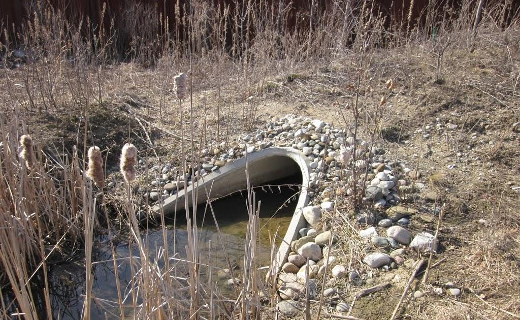 Civil Engineering Photos: #64 Concrete Culvert End Section