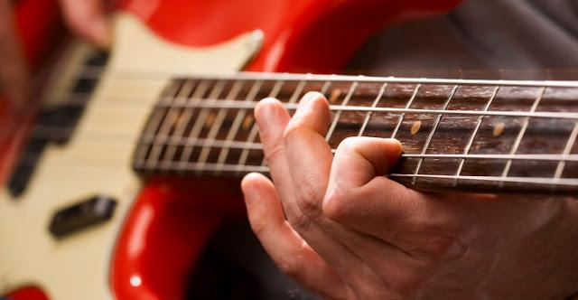 benarkah semua gitaris bisa main bass peter de vries guitar