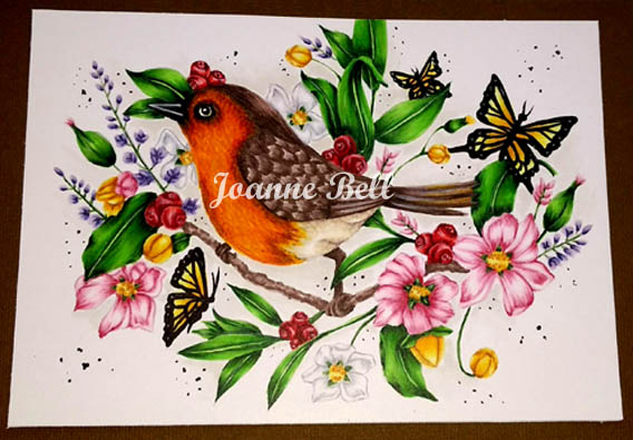 Robin sitting on a branch surrounded by butterflies. berries, leaves and flowers coloured with Copic markers on Colours n Cards