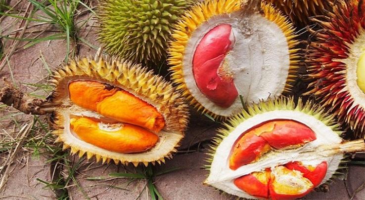 Mengenal Dubang, Durian Merah yang Hanya Ada di Banyuwangi