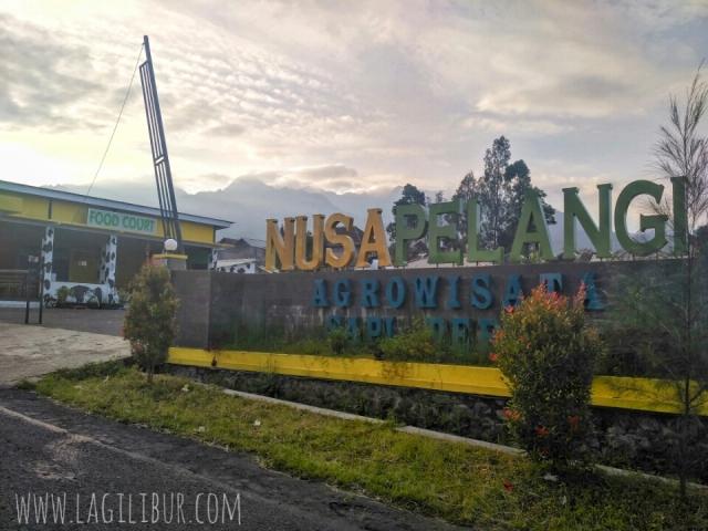 Nusa Pelangi, Agrowisata Sapi Perah