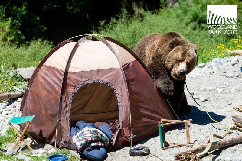 G Bear Tent At Bear Affair this weekend