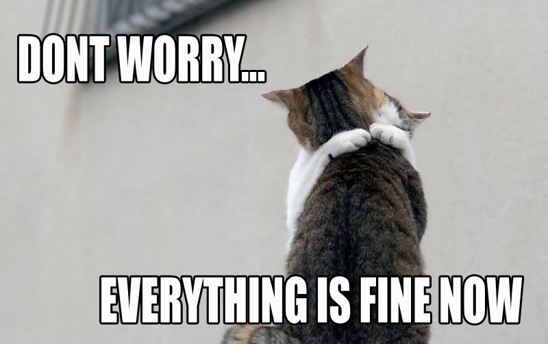 Dont Worry Funny Cat Pictures