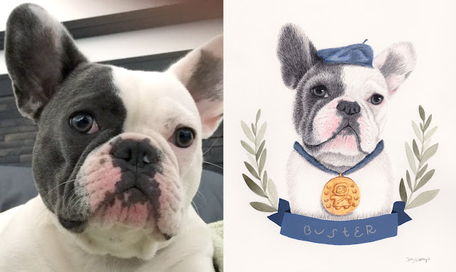 mixed media portrait drawing of Buster the French Bulldog