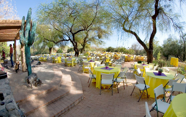 Tucson Wedding Venues Tohono Chul Park