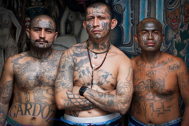 """"""" They're """"disproportionately brutal"""" Houston Police Chief Acevedo talks about the Crimes brutality of MS-13 gang."""