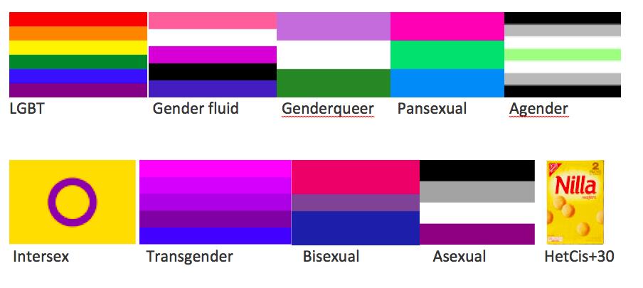 Cisgender Flag 20300 Zsource