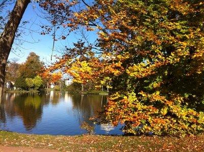Couleurs d'automne Le Vesinet