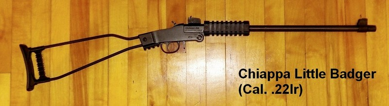 Armes à air et carabines .22lr de Picanox Chiappa-LB-22